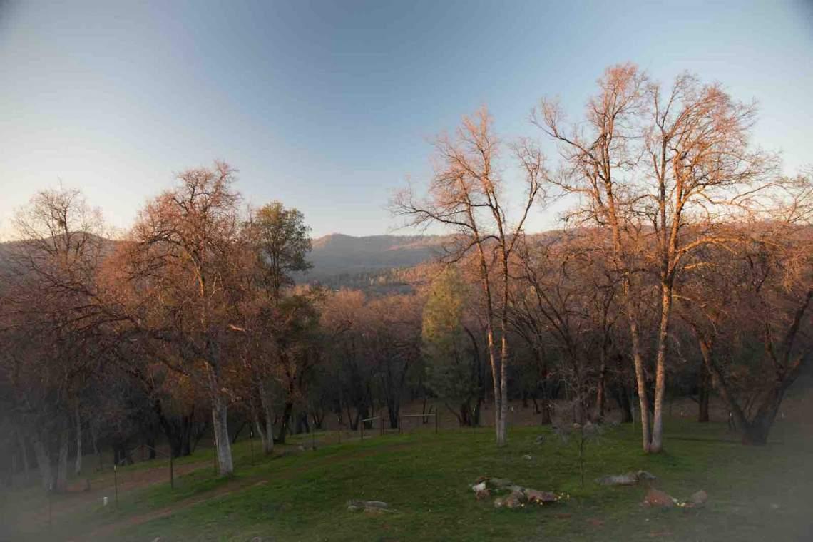 Sonora, Silver Dawn 2